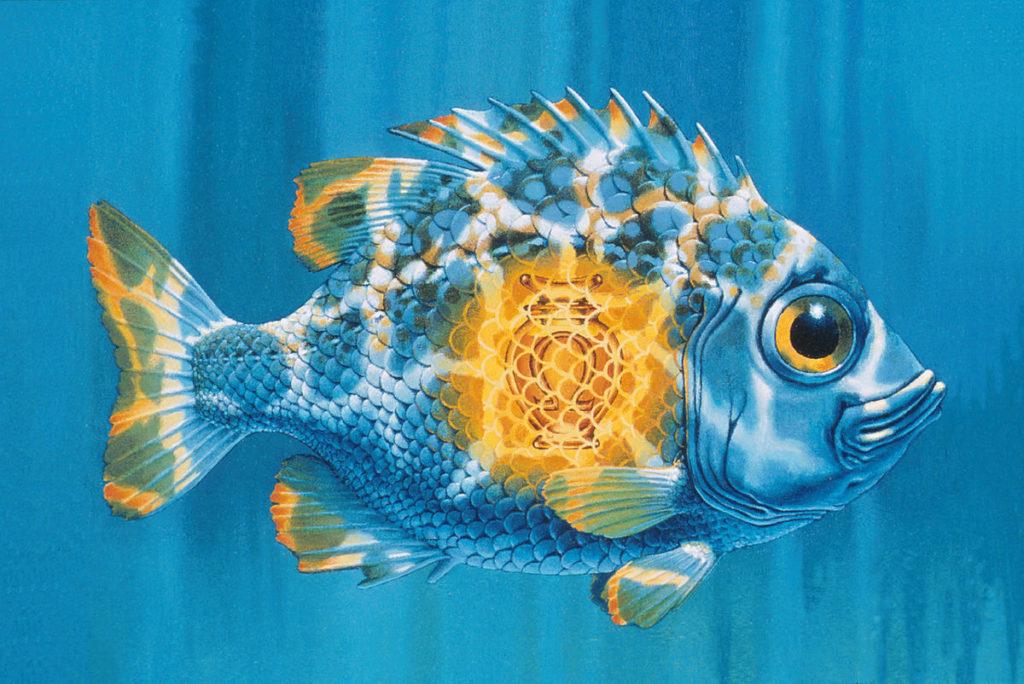 Fish Oil. Omega 3