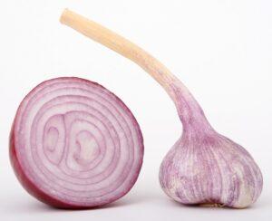 Onion Health Benefit
